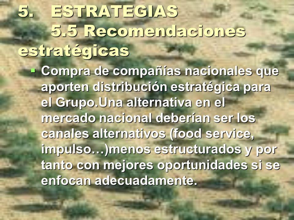 5. ESTRATEGIAS 5.5 Recomendaciones estratégicas Compra de compañías nacionales que aporten distribución estratégica para el Grupo.Una alternativa en e