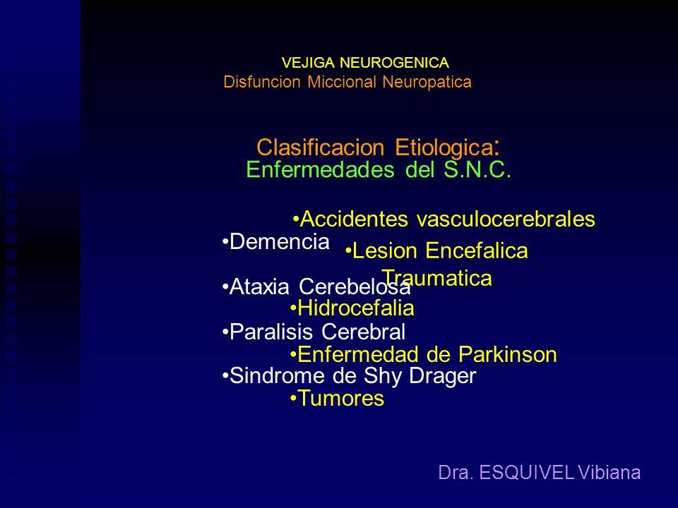 VEJIGA NEUROGENICA Dra. ESQUIVEL Vibiana Definicion: Disfuncion Miccional Neuropatica Es la perturbacion del llenado/almacenamiento de la orina y/o de