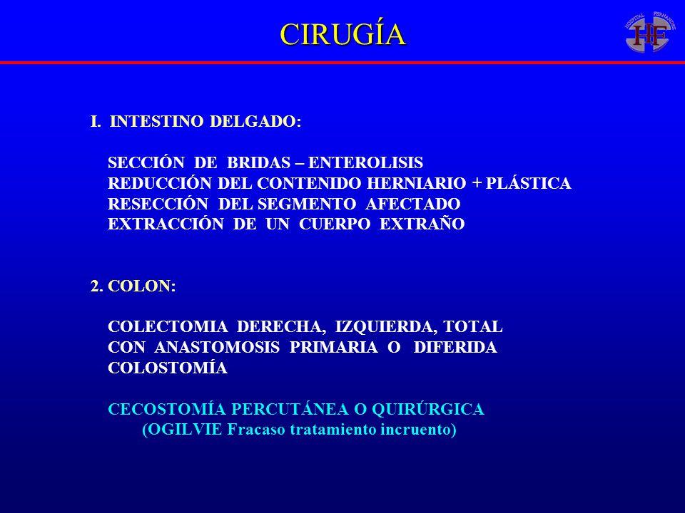 CIRUGÍA I. INTESTINO DELGADO: SECCIÓN DE BRIDAS – ENTEROLISIS REDUCCIÓN DEL CONTENIDO HERNIARIO + PLÁSTICA RESECCIÓN DEL SEGMENTO AFECTADO EXTRACCIÓN