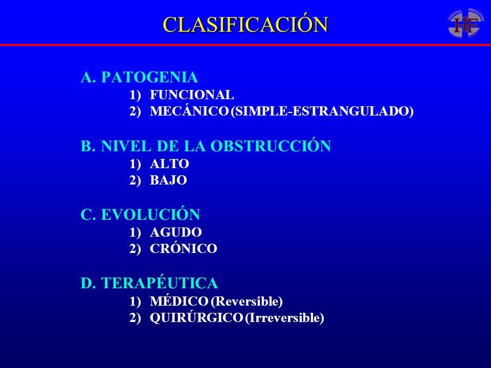 CLASIFICACIÓN A.PATOGENIA 1)FUNCIONAL 2)MECÁNICO (SIMPLE-ESTRANGULADO) B.NIVEL DE LA OBSTRUCCIÓN 1)ALTO 2)BAJO C.EVOLUCIÓN 1)AGUDO 2)CRÓNICO D.TERAPÉU