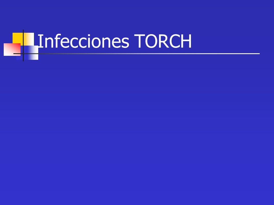 ¿Qué significa TORCH? TO Toxoplasmosis R Rubéola C Citomegalovirus H Herpes virus