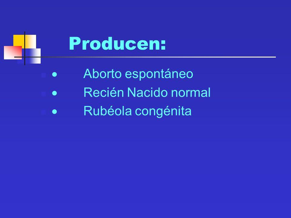 Producen: Aborto espontáneo Recién Nacido normal Rubéola congénita