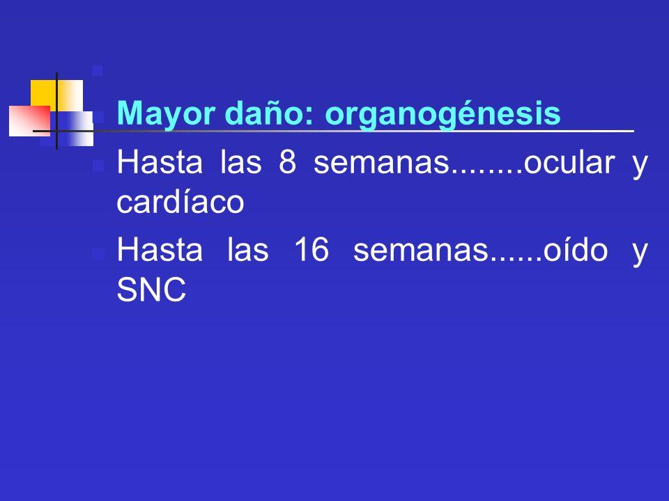 Mayor daño: organogénesis Hasta las 8 semanas........ocular y cardíaco Hasta las 16 semanas......oído y SNC