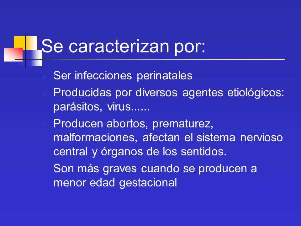 Se caracterizan por: Ser infecciones perinatales Producidas por diversos agentes etiológicos: parásitos, virus...... Producen abortos, prematurez, mal