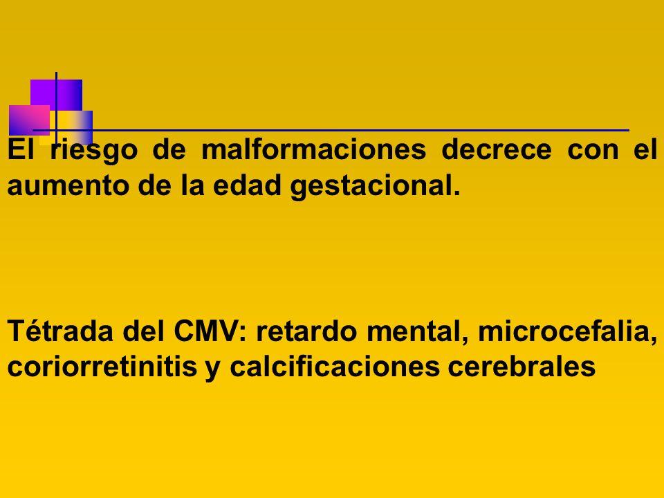 El riesgo de malformaciones decrece con el aumento de la edad gestacional. Tétrada del CMV: retardo mental, microcefalia, coriorretinitis y calcificac