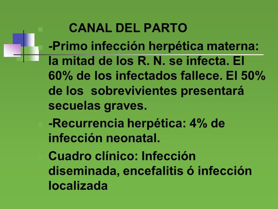 CANAL DEL PARTO -Primo infección herpética materna: la mitad de los R. N. se infecta. El 60% de los infectados fallece. El 50% de los sobrevivientes p
