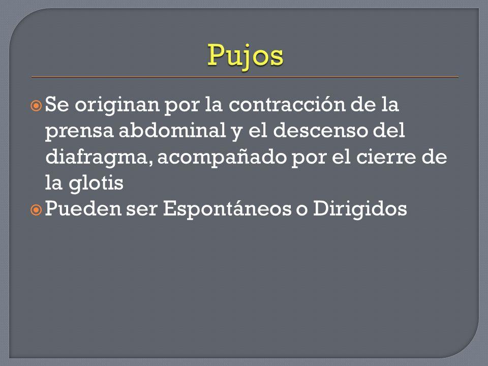 Se originan por la contracción de la prensa abdominal y el descenso del diafragma, acompañado por el cierre de la glotis Pueden ser Espontáneos o Diri