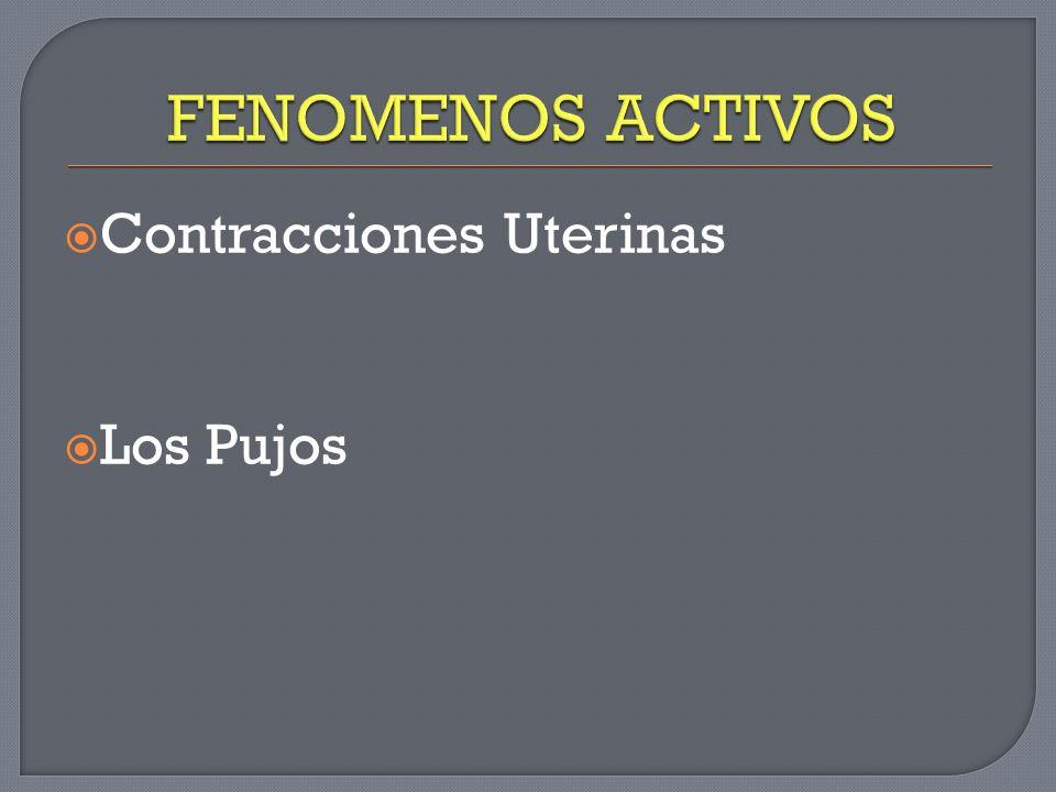 Contracciones de Álvarez: Alta frecuencia, baja intensidad, se propaga a un pequeño sector del útero.