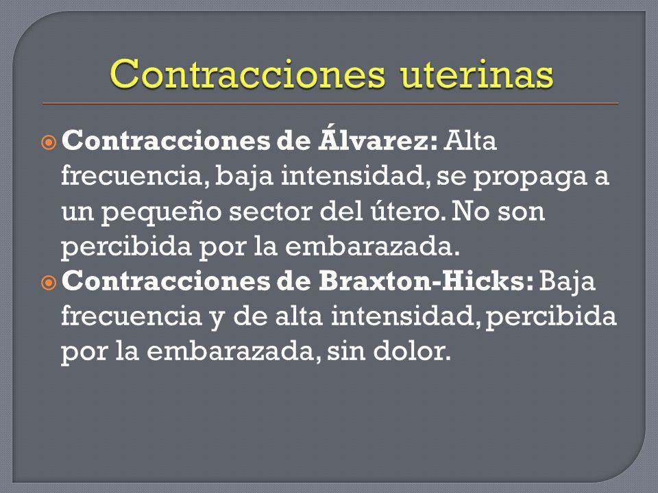 Contracciones de Álvarez: Alta frecuencia, baja intensidad, se propaga a un pequeño sector del útero. No son percibida por la embarazada. Contraccione