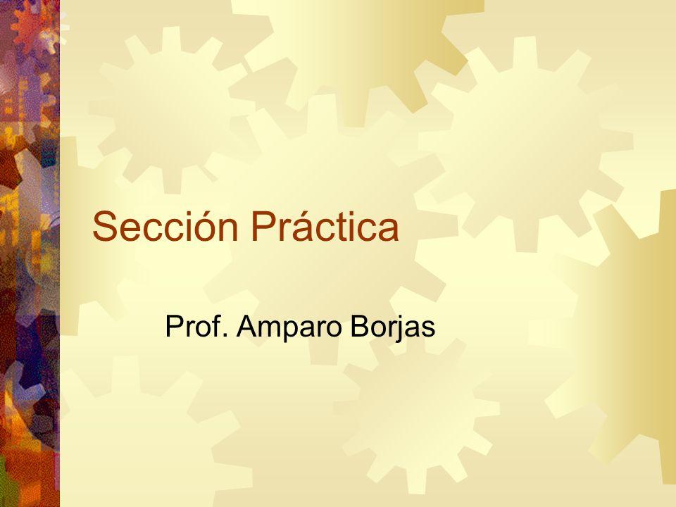 Sección Práctica Prof. Amparo Borjas