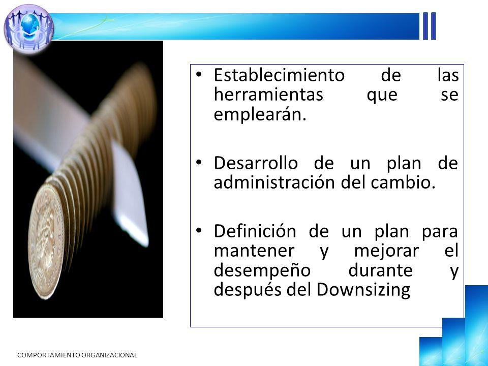 Establecimiento de las herramientas que se emplearán. Desarrollo de un plan de administración del cambio. Definición de un plan para mantener y mejora