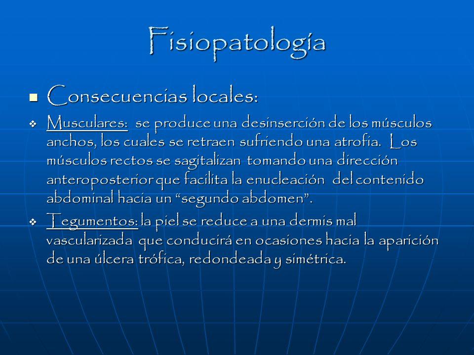 Fisiopatología Consecuencias locales: Consecuencias locales: Musculares: se produce una desinserción de los músculos anchos, los cuales se retraen suf