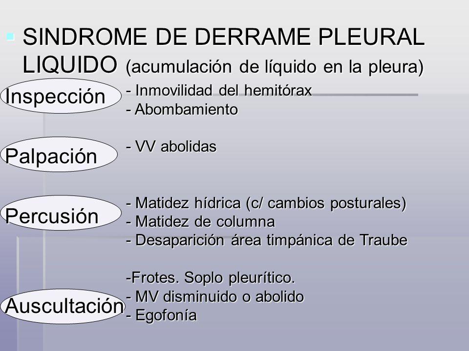 SINDROME DE COLAPSO (falta de aireación de los alvéolos, por aposición de sus paredes) SINDROME DE COLAPSO (falta de aireación de los alvéolos, por aposición de sus paredes) Inspección - Movilidad del hemitórax disminuida - Retracción - Retracción Palpación - V V abolidas Percusión - Matidez en la zona colapsada - Hipersonoridad en zona vecina - Hipersonoridad en zona vecina - Columna sonora - Columna sonora Auscultación - M V abolido