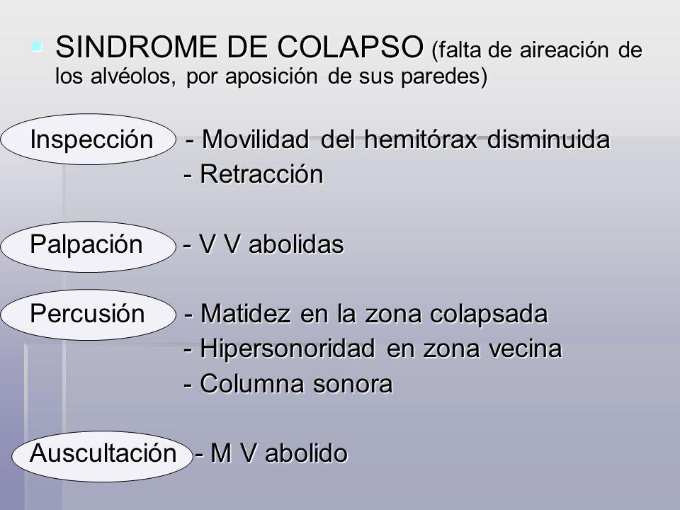 SINDROME DE NEUMOTORAX ( presencia de aire en la cavidad pleural) SINDROME DE NEUMOTORAX ( presencia de aire en la cavidad pleural) Inspección - Inmovilidad respiratoria - Aumento volumétrico (en Hipertensivo) - Aumento volumétrico (en Hipertensivo) Palpación - VV abolidas o disminuidas - Expansión basal, excursión disminuidas - Expansión basal, excursión disminuidas Percusión - Hipersonoridad - Descenso diafragmático - Descenso diafragmático Auscultación - MV disminuido o abolido