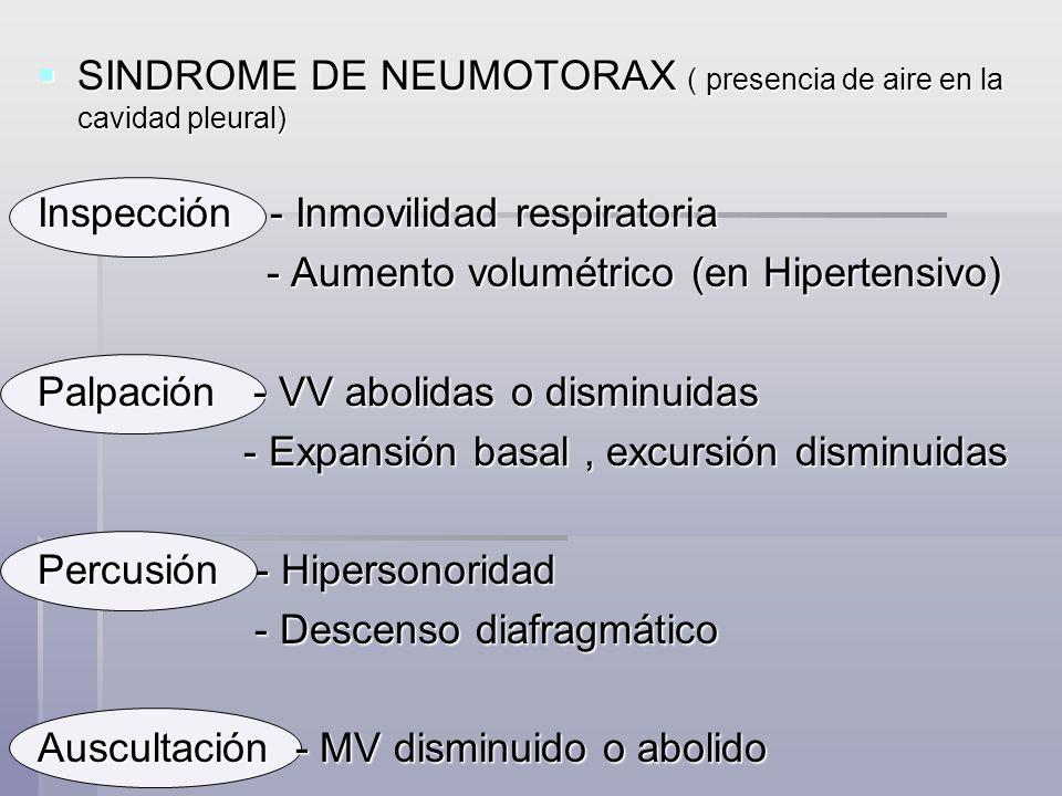 SINDROME DE NEUMOTORAX ( presencia de aire en la cavidad pleural) SINDROME DE NEUMOTORAX ( presencia de aire en la cavidad pleural) Inspección - Inmov