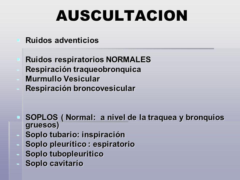 AUSCULTACION Ruidos adventicios Ruidos adventicios Ruidos respiratorios NORMALES Ruidos respiratorios NORMALES -Respiración traqueobronquica -Murmullo