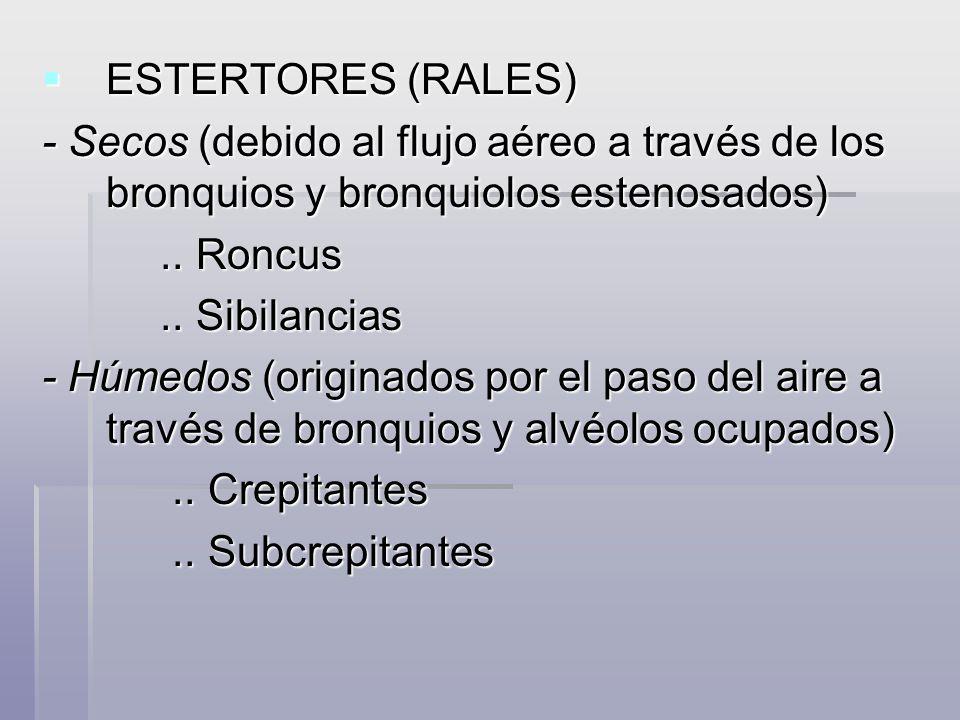 ESTERTORES (RALES) ESTERTORES (RALES) - Secos (debido al flujo aéreo a través de los bronquios y bronquiolos estenosados).. Roncus.. Roncus.. Sibilanc