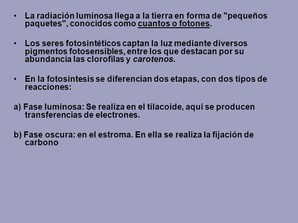 La radiación luminosa llega a la tierra en forma de