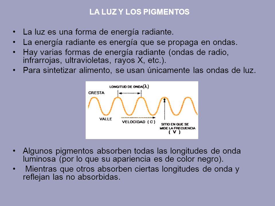 La luz es una forma de energía radiante. La energía radiante es energía que se propaga en ondas. Hay varias formas de energía radiante (ondas de radio