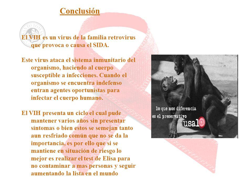 Conclusión El VIH es un virus de la familia retrovirus que provoca o causa el SIDA. Este virus ataca el sistema inmunitario del organismo, haciendo al