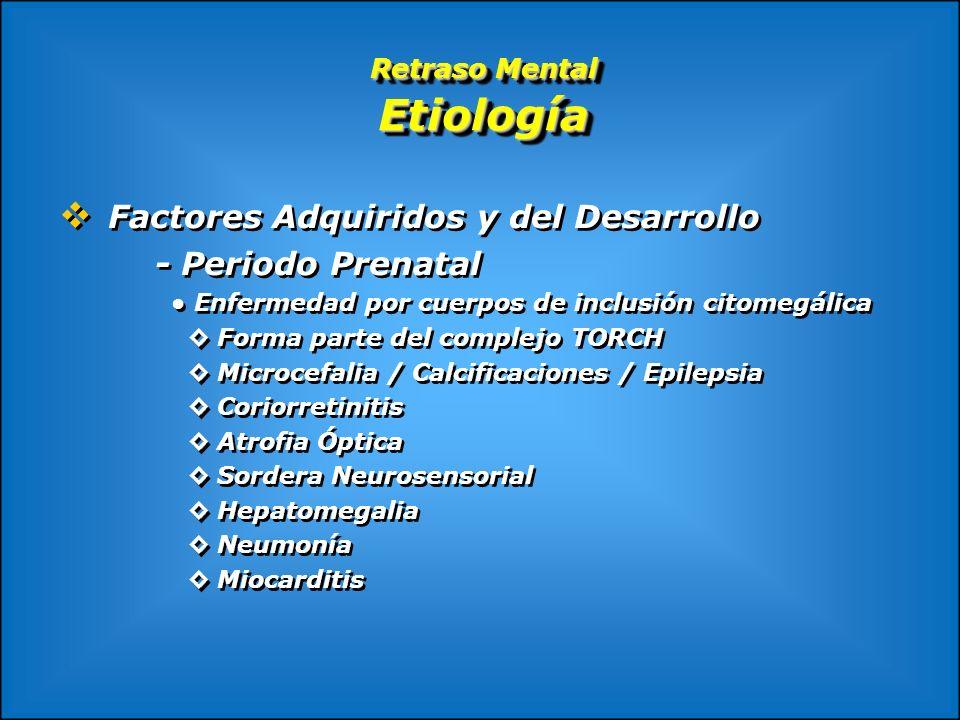 Retraso Mental Etiología Factores Adquiridos y del Desarrollo - Periodo Prenatal Enfermedad por cuerpos de inclusión citomegálica Forma parte del comp