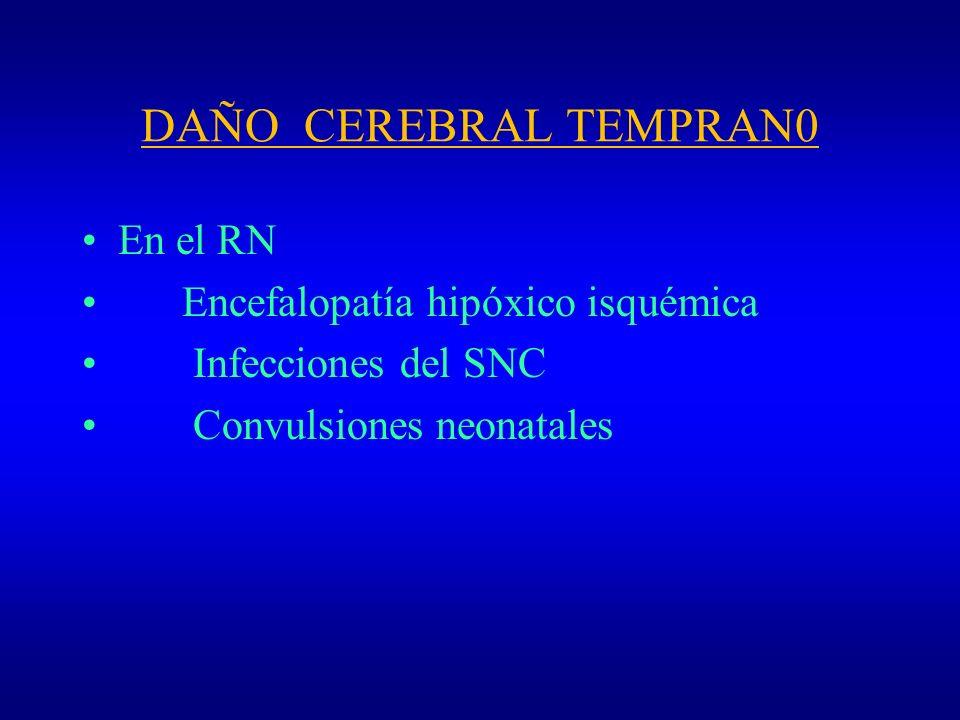 Retraso Mental - Etiología Factores Genéticos - Esclerosis Tuberosa Trastorno neurocutaneo multisistemico Pacientes presentan neoplasias benignas que afectan al cerebro, rinhon, retina y piel.