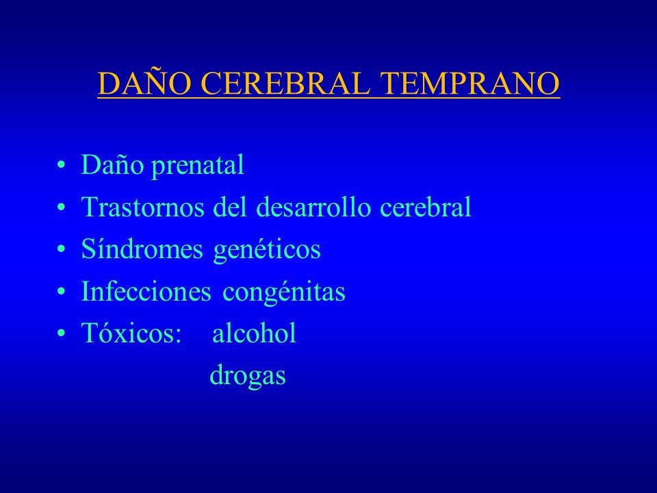 DAÑO CEREBRAL TEMPRANO Daño prenatal Trastornos del desarrollo cerebral Síndromes genéticos Infecciones congénitas Tóxicos: alcohol drogas