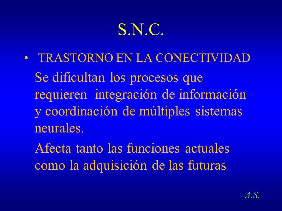 S.N.C. TRASTORNO EN LA CONECTIVIDAD Se dificultan los procesos que requieren integración de información y coordinación de múltiples sistemas neurales.