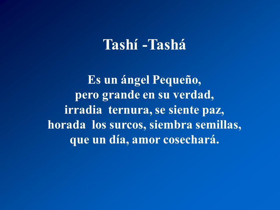 Tashí Tashá por un sendero bajó a la tierra que a de cultivar, abrirá los surco y depositará, la semilla que a de germinar Tashí Tashá Muestra su herm