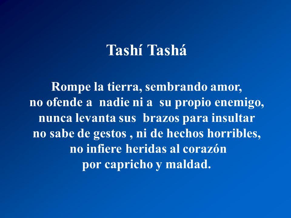 Tashí Tashá Es un ángel radiante en cualquier lugar, Sensible y tierno que llena de tranquilidad, no perturba la vida, ama y vive en paz.,