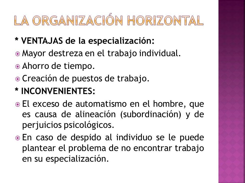 Se refiere al establecimiento y agrupación de actividades y recursos necesarios que interactúen entre si a través de una coordinación horizontal y vertical para el cumplimiento de los objetivos contemplados en la estructura de la empresa.