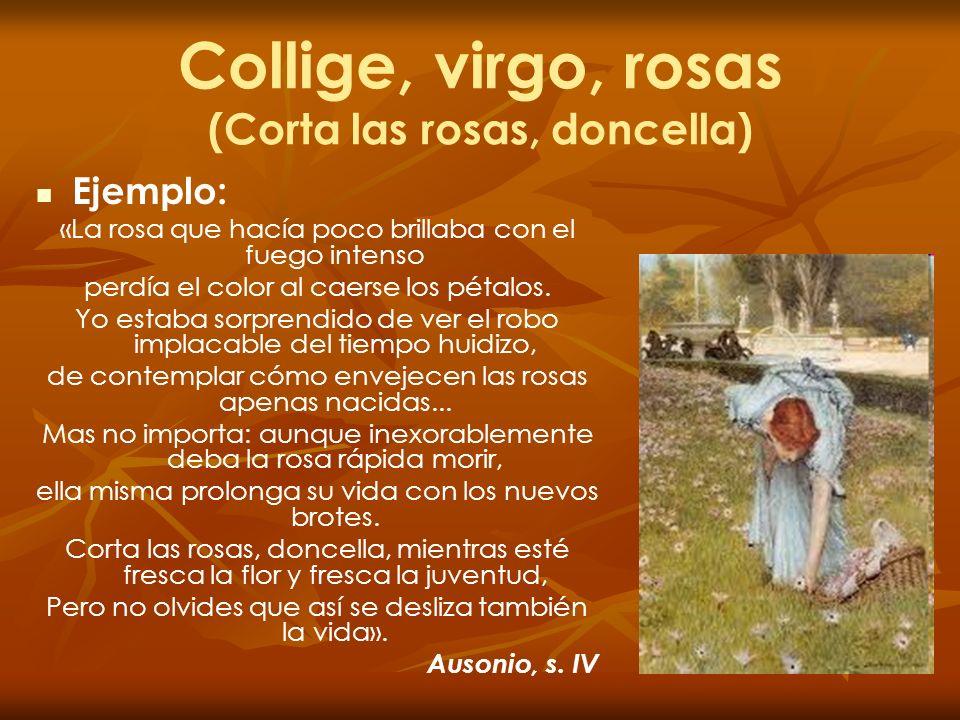 Resultado de imagen de COLLIGE VIRGO ROSAS AUSONIO