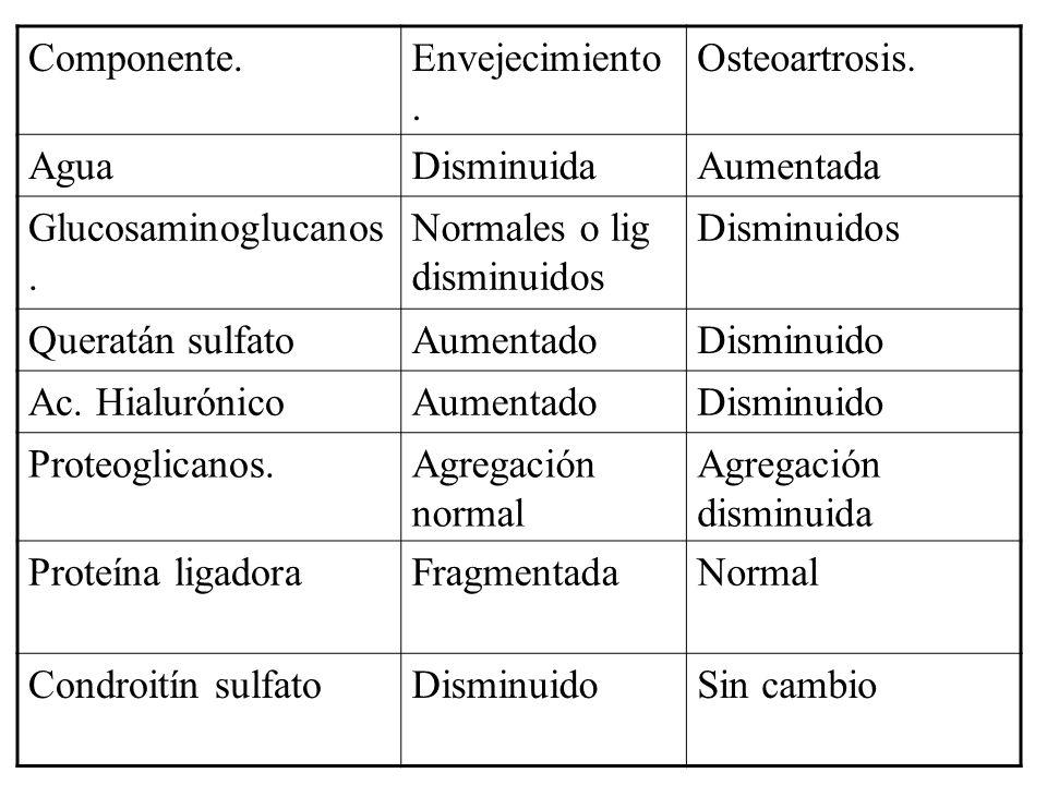 Componente.Envejecimiento. Osteoartrosis. AguaDisminuidaAumentada Glucosaminoglucanos. Normales o lig disminuidos Disminuidos Queratán sulfatoAumentad