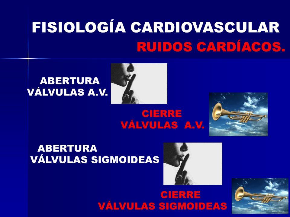 FISIOLOGÍA CARDIOVASCULAR RUIDOS CARDÍACOS. ABERTURA VÁLVULAS A.V. CIERRE VÁLVULAS A.V. ABERTURA VÁLVULAS SIGMOIDEAS CIERRE VÁLVULAS SIGMOIDEAS