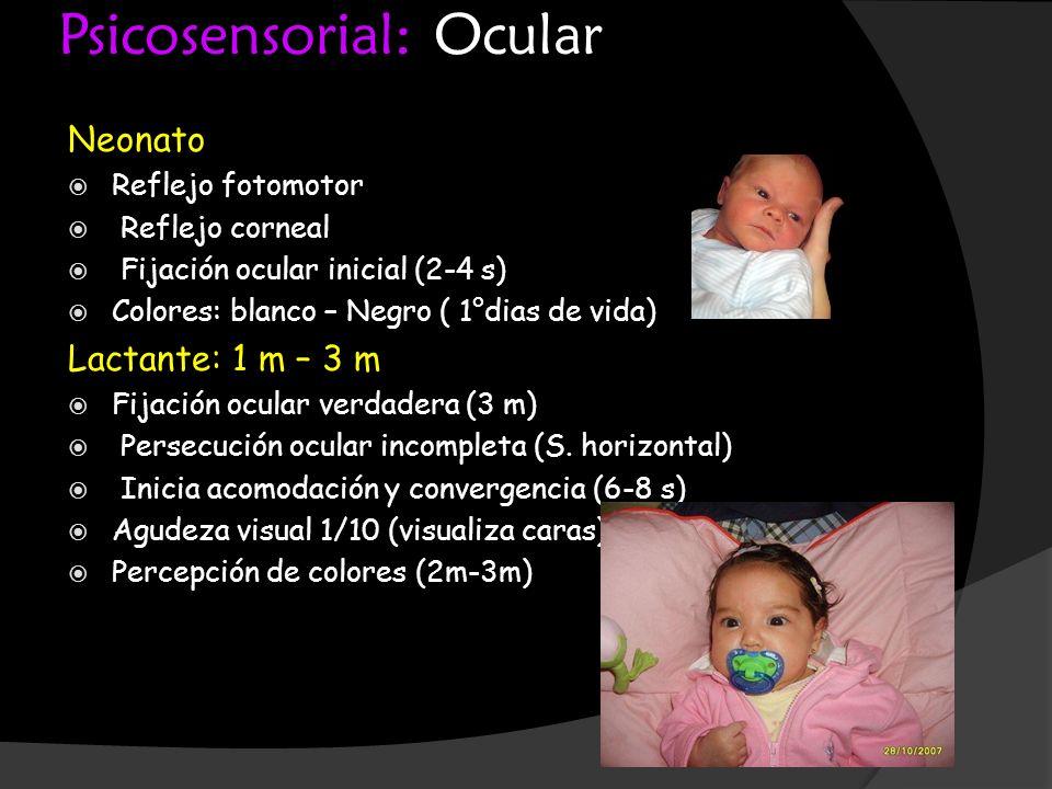 Psicosensorial: Ocular Neonato Reflejo fotomotor Reflejo corneal Fijación ocular inicial (2-4 s) Colores: blanco – Negro ( 1°dias de vida) Lactante: 1