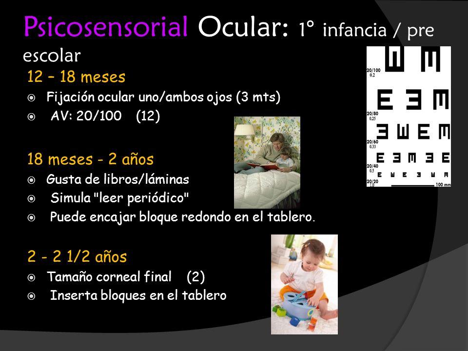 Psicosensorial Ocular: 1° infancia / pre escolar 12 – 18 meses Fijación ocular uno/ambos ojos (3 mts) AV: 20/100 (12) 18 meses - 2 años Gusta de libro