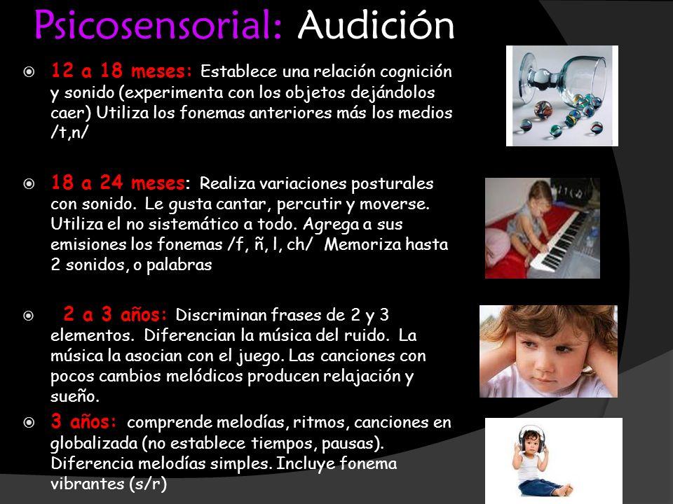 Psicosensorial: Audición 12 a 18 meses: Establece una relación cognición y sonido (experimenta con los objetos dejándolos caer) Utiliza los fonemas an