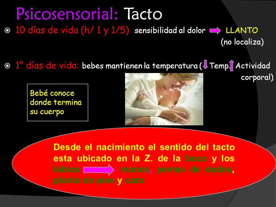 Psicosensorial: Tacto 10 días de vida (h/ 1 y 1/5) sensibilidad al dolor LLANTO (no localiza) 1° días de vida: bebes mantienen la temperatura ( Temp.
