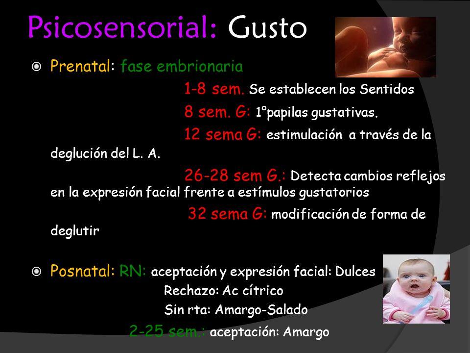 Psicosensorial: Gusto Prenatal: fase embrionaria 1-8 sem. Se establecen los Sentidos 8 sem. G: 1°papilas gustativas. 12 sema G: estimulación a través