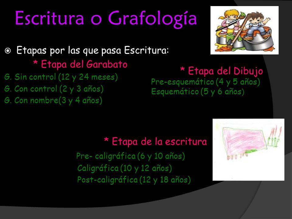 Escritura o Grafología Etapas por las que pasa Escritura: * Etapa del Garabato G. Sin control (12 y 24 meses) G. Con control (2 y 3 años) G. Con nombr