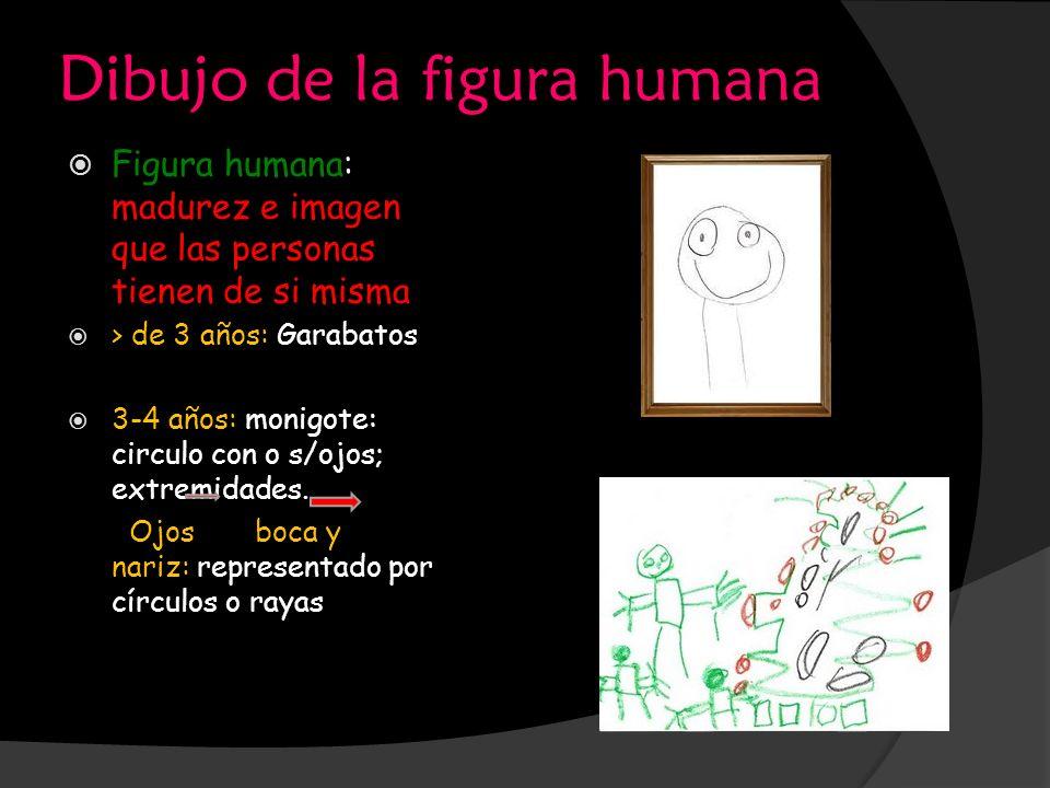Dibujo de la figura humana Figura humana: madurez e imagen que las personas tienen de si misma > de 3 años: Garabatos 3-4 años: monigote: circulo con