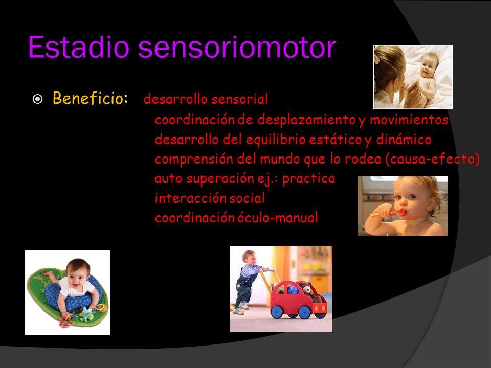 Estadio sensoriomotor Beneficio: desarrollo sensorial coordinación de desplazamiento y movimientos desarrollo del equilibrio estático y dinámico compr
