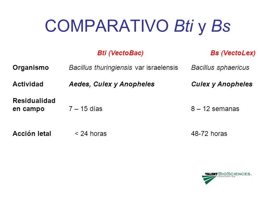 COMPARATIVO Bti y Bs Organismo Actividad Residualidad en campo Acción letal Bacillus thuringiensis var israelensis Aedes, Culex y Anopheles 7 – 15 día