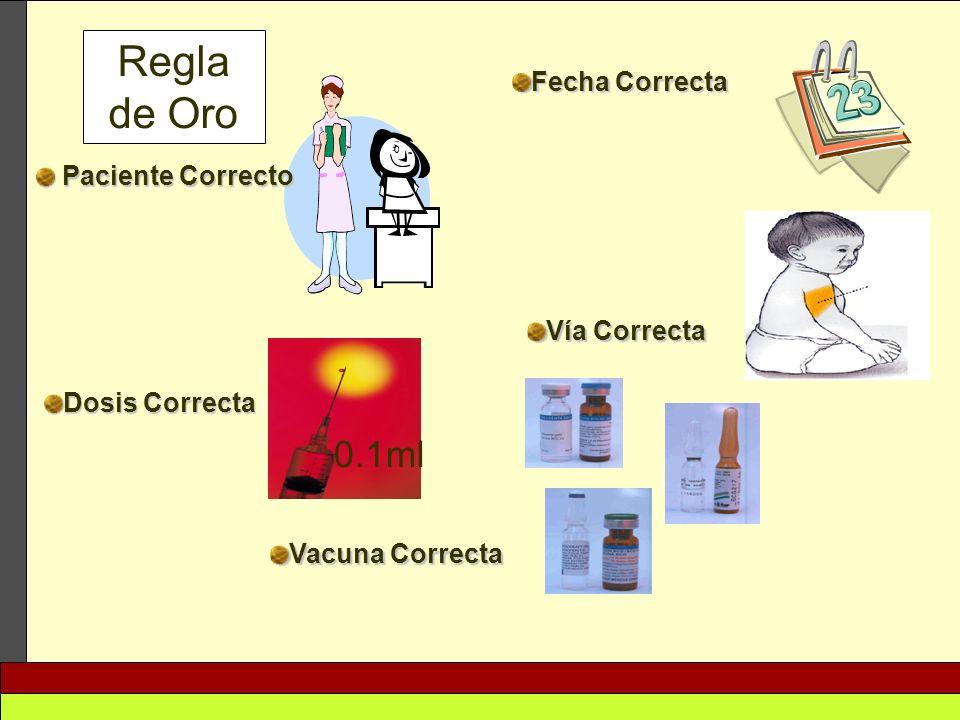 Paciente Correcto Paciente Correcto Fecha Correcta Dosis Correcta Vía Correcta Vacuna Correcta Regla de Oro 0.1ml