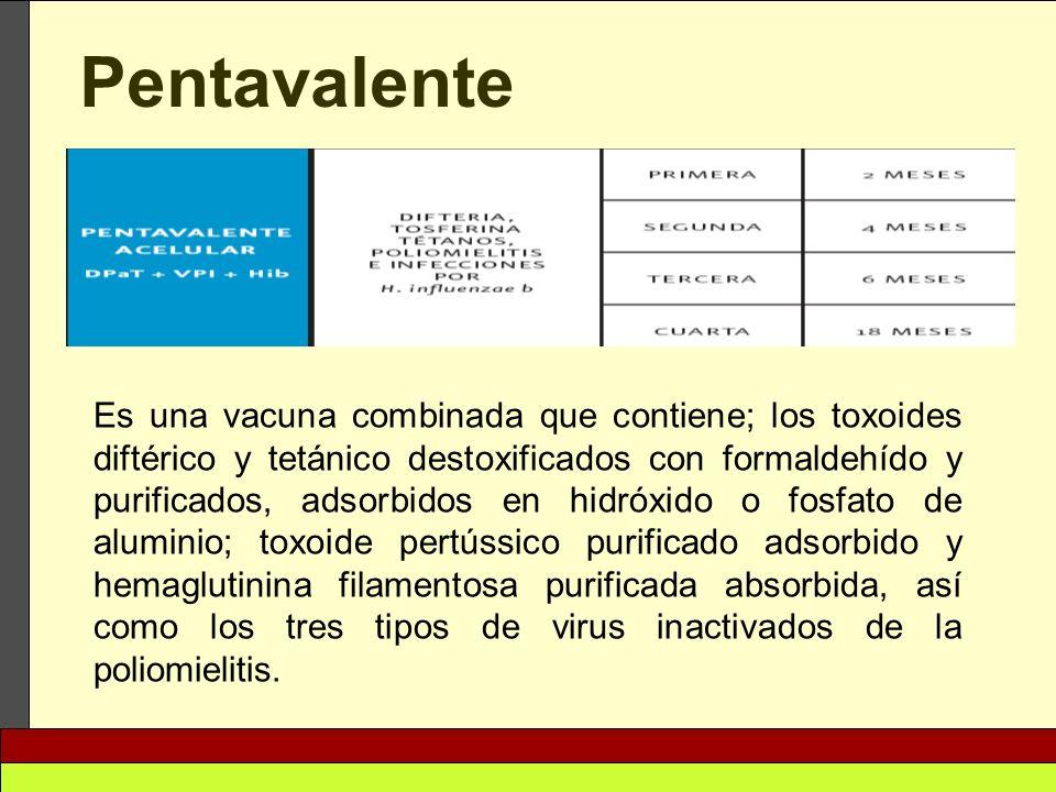 Pentavalente Es una vacuna combinada que contiene; los toxoides diftérico y tetánico destoxificados con formaldehído y purificados, adsorbidos en hidr