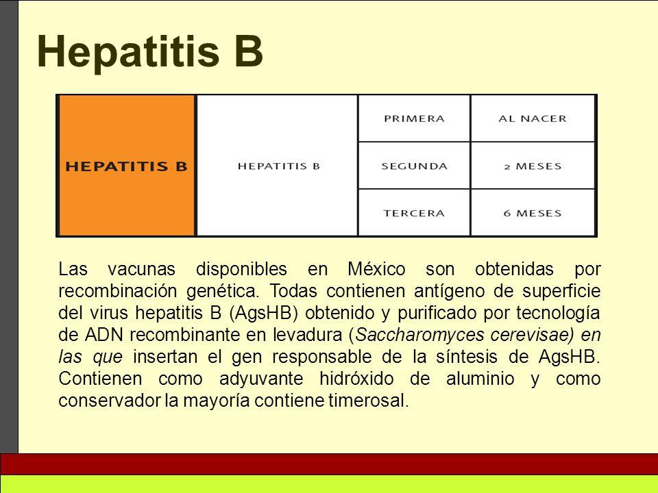 Hepatitis B Las vacunas disponibles en México son obtenidas por recombinación genética. Todas contienen antígeno de superficie del virus hepatitis B (