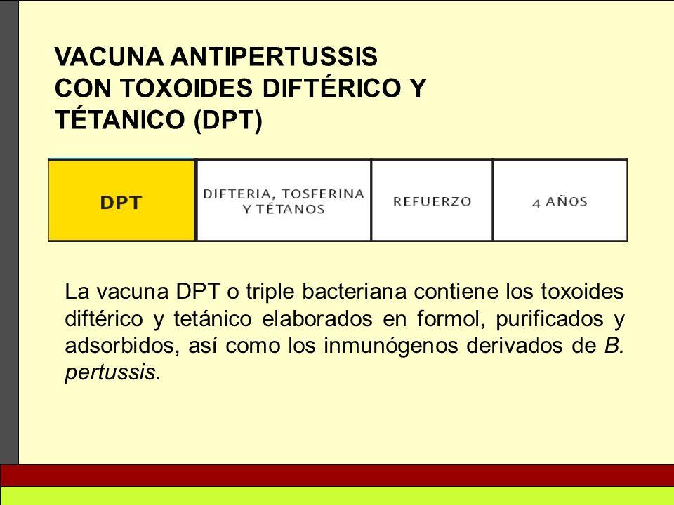 VACUNA ANTIPERTUSSIS CON TOXOIDES DIFTÉRICO Y TÉTANICO (DPT) La vacuna DPT o triple bacteriana contiene los toxoides diftérico y tetánico elaborados e