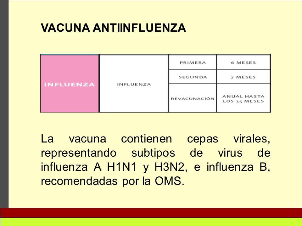 VACUNA ANTIINFLUENZA La vacuna contienen cepas virales, representando subtipos de virus de influenza A H1N1 y H3N2, e influenza B, recomendadas por la