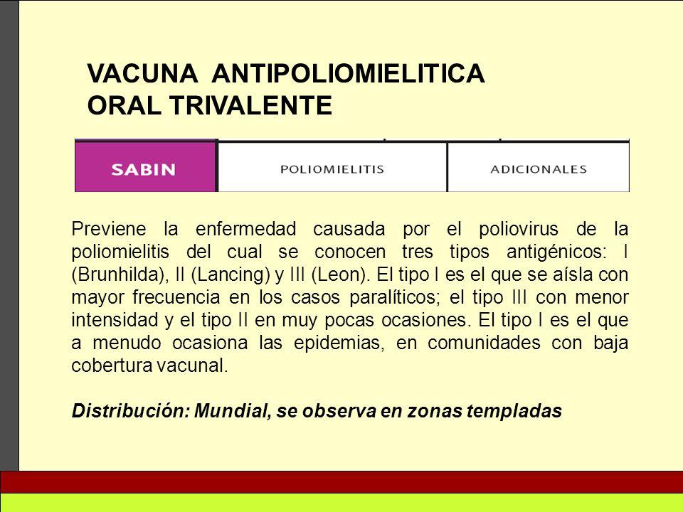VACUNA ANTIPOLIOMIELITICA ORAL TRIVALENTE Previene la enfermedad causada por el poliovirus de la poliomielitis del cual se conocen tres tipos antigéni