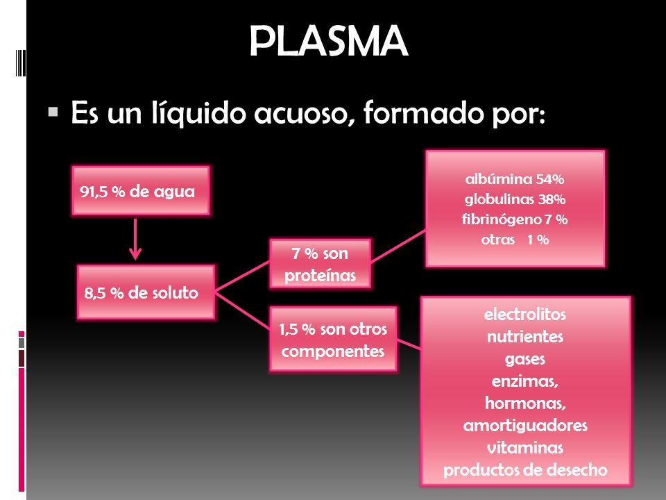 PLASMA Es un líquido acuoso, formado por: 91,5 % de agua 8,5 % de soluto albúmina 54% globulinas 38% fibrinógeno 7 % otras 1 % electrolitos nutrientes